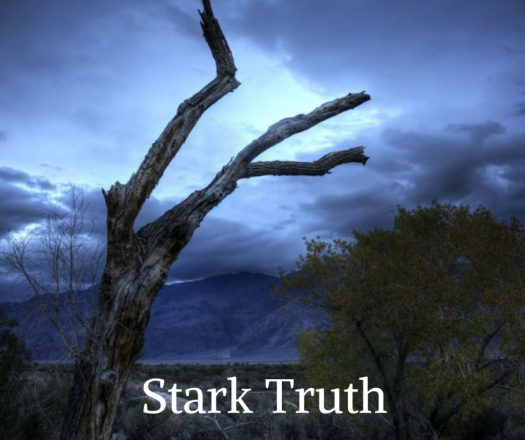 stark-truth-by-wayne-wirs